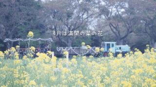 4月の成田ゆめ牧場オートキャンプ場の口コミ体験レビュー